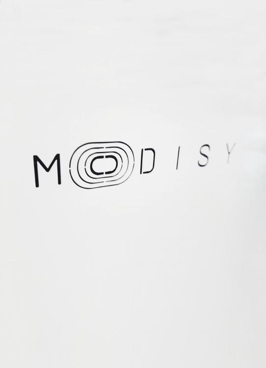 modisy00_1